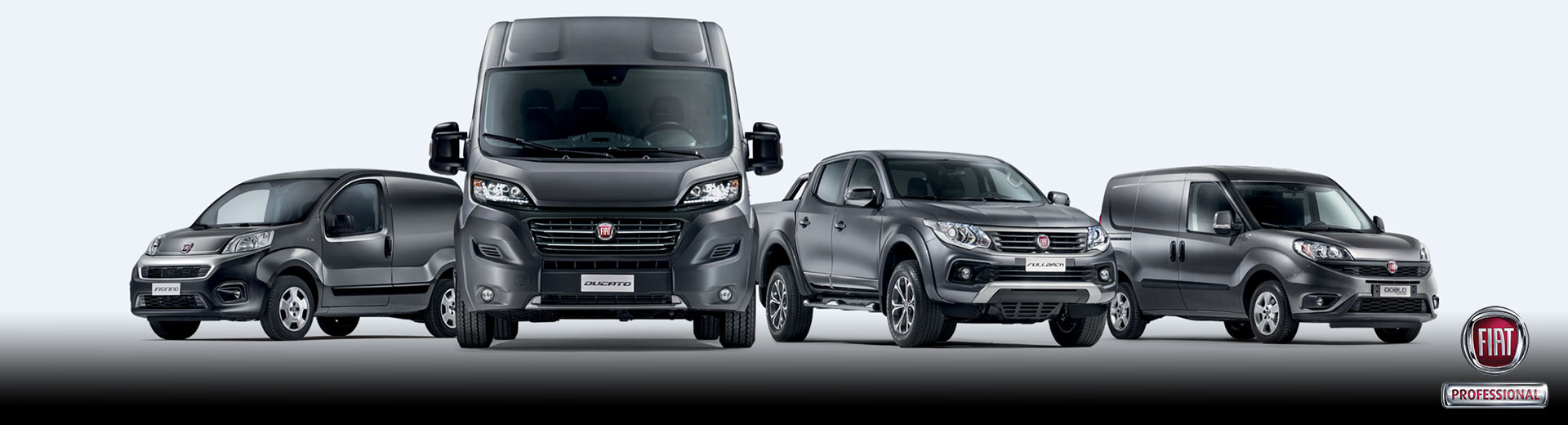 Fiat Professional New Banner